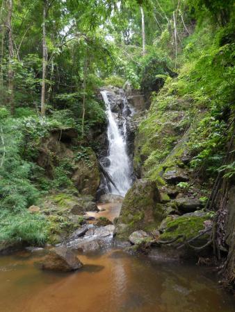 Mai Siam Resort: treck dans la jungle