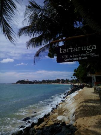 Tartaruga Hotel & Beach Restaurant: sea view