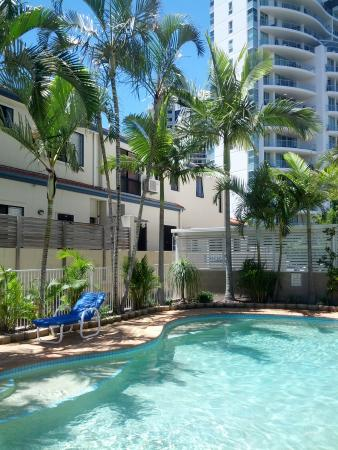 Budds Beach Apartments : Pool at the apartment