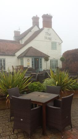 The Stag at Redhill : The Stag