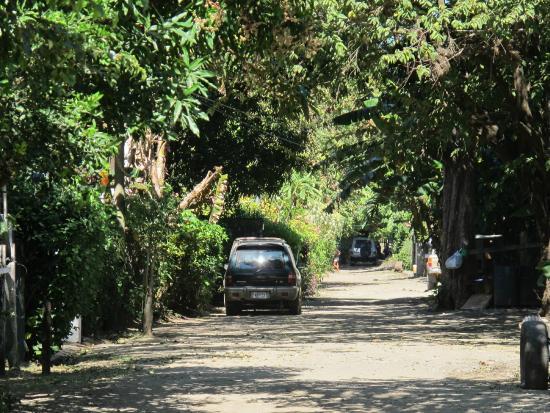 Nosara Playa Garza Hotel: local road in Playa Garza