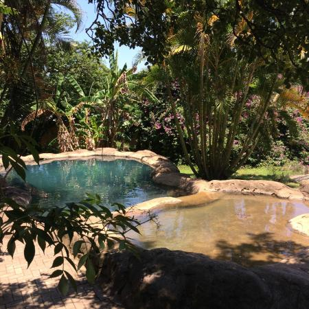 Gecko Lodge: Cool down and chilling...