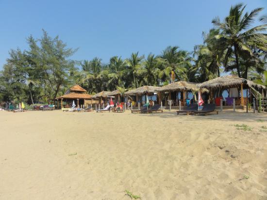 Madhu Coconut Beach Huts: View from beach to Madhu Beach huts