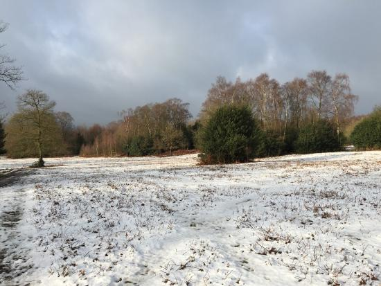 Sutton Park National Nature Reserve: Beautiful in all seasons
