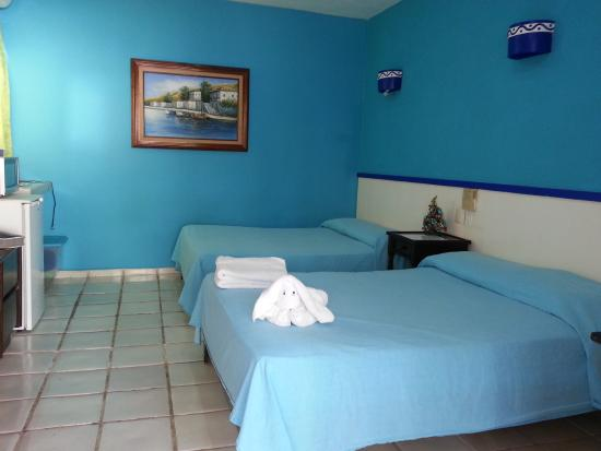 El Acuario Hotel: camera