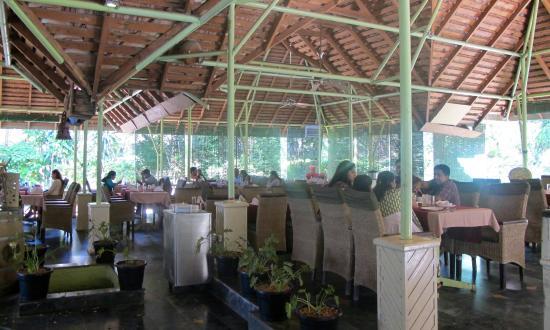 Olive Garden Picture Of Olive Garden Mysuru Mysore Tripadvisor