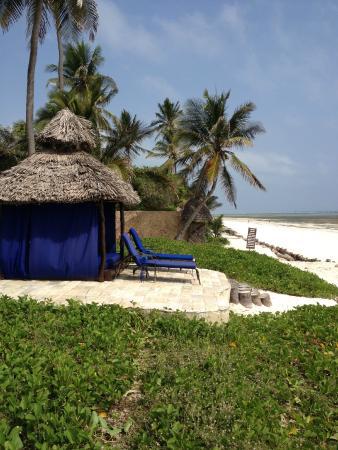 The Palms: bungalow på stranden