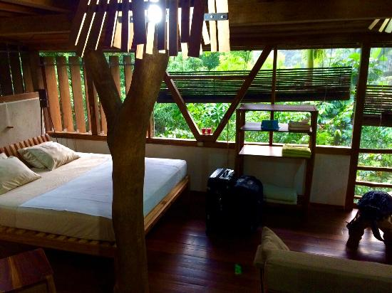 Omega Tours Eco Jungle Lodge: Downstears of Beauty View Cabinet.