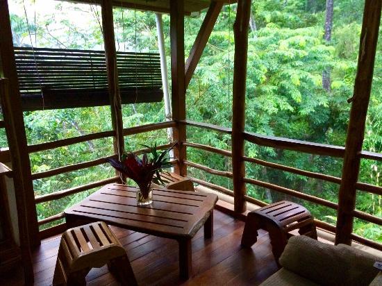 Omega Tours Eco Jungle Lodge: Beauty View Cabinet <3