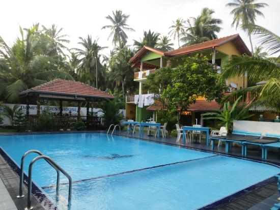 Damith Guest House: Tolle Pool