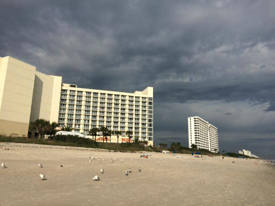 Hilton Melbourne Beach Oceanfront: View of the Hilton from the beach