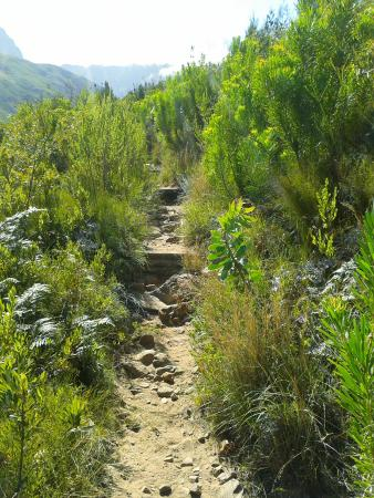 Jonkershoek Nature Reserve : what a privilege to hike this view....