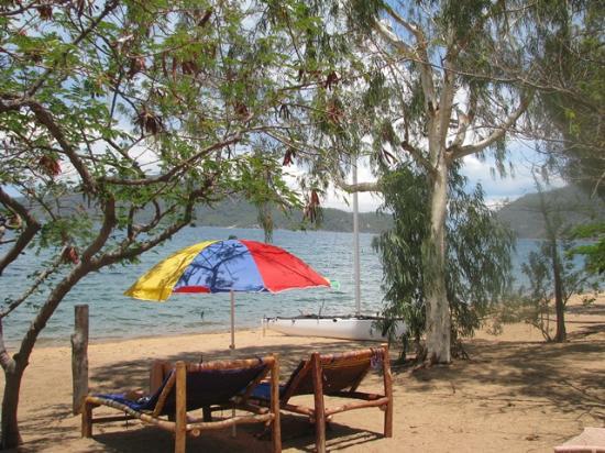 Thumbi View Lodge: welcome shade