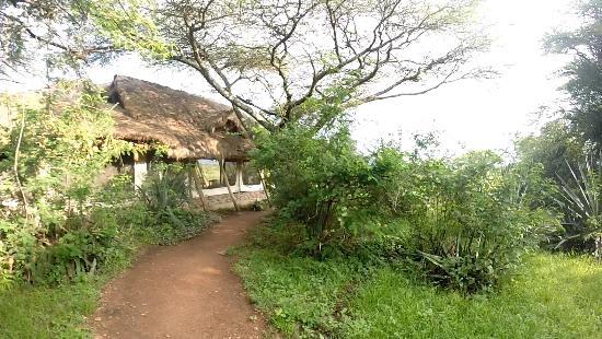 Ikoma Safari Camp: Restaurante Ikoma