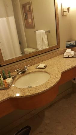 Hilton Hartford: Room's Bathroom