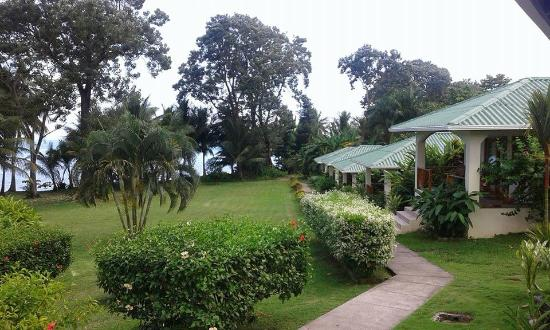 View from the clubhouse picture of hooked on panama for Panama fishing lodge