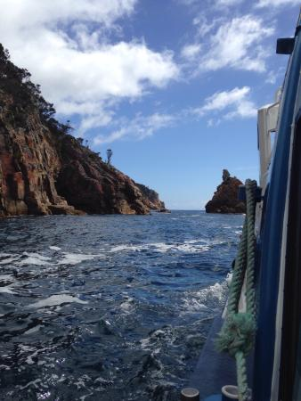 East Coast Cruises: View on the boat :)
