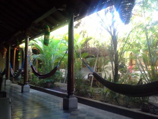 Hostel Oasis: The little garden inside the hostel