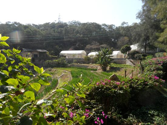 Xiamen Botanical Garden: agriculture and sustainable living