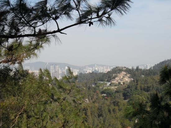 Xiamen Botanical Garden: view from mountain trail