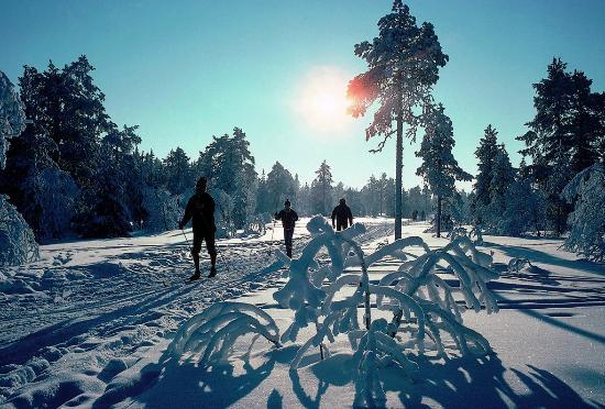 Ski & Guide
