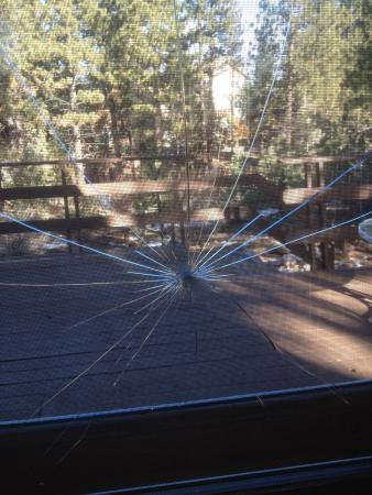 Big Bear Cool Cabins: Shattered window in cabin.