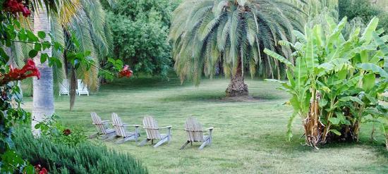 Plantation Bed & Breakfast: Back Garden