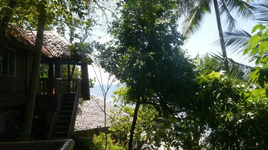 Cove Sands Beach Resort: Blick aus dem Zimmer