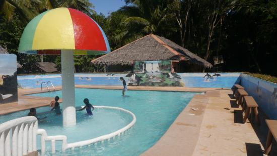 Cove Paradise Beach & Dive Resort: Pool