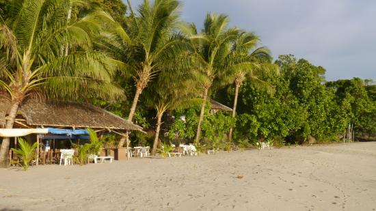 Cove Paradise Beach & Dive Resort: Blick vom Strand