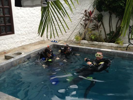 Scandi Divers: Conan Teaching in the Pool