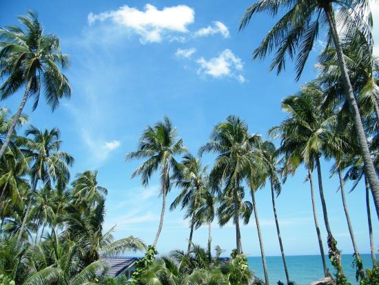 Mui Ne Resort by The SinhTourist: h