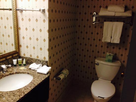 Park Plaza Bloomington : Nice roomy bathroom!