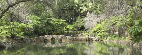 Tamborine Mountain Botanic Gardens: The Iconic Stone Bridge