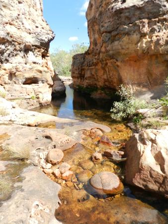 Lorella Springs Wilderness Park : crystal clear waters to swim in all to yourself