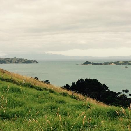 Isla Waiheke, Nueva Zelanda: One of the views over their extensive station...