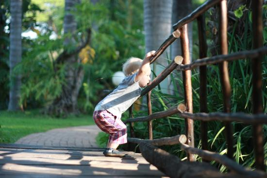 Lion's Guesthouse: Beautiful garden and playground for the kids
