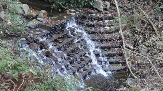 Shasui Falls: 滝沢川の階段状堰