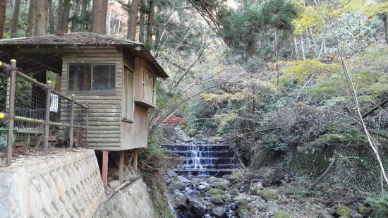 Shasui Falls: 茶房さざれ石(廃業中でした)