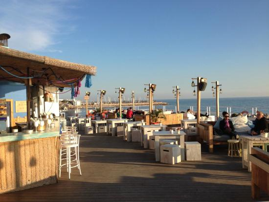 Verduras picture of vivero beach club restaurant sitges for Viveros barcelona