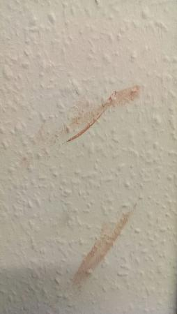 Mercure Leicester The Grand Hotel: what appears to be dried blood on a toilet wall
