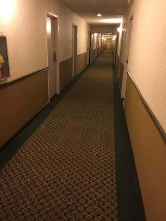 Best Western Shepherdsville: Super long hallway