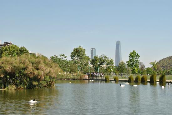 Mestizo: Vista do Parque Bicentenário e edifício Costanera ao fundo