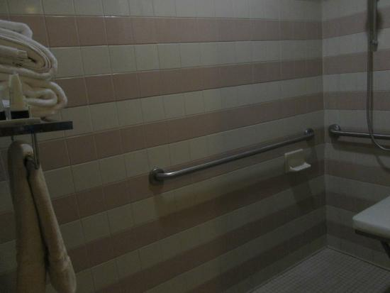 HNA Palisades Premier Conference Center: drop-down seat in spacious handcapped bathroom