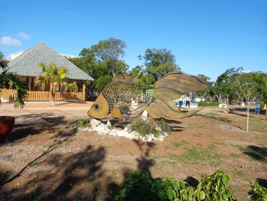 Resort picture of melia jardines del rey cayo coco for Jardines del rey