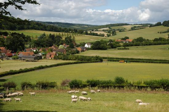 Chilterns Area of Outstanding Natural Beauty