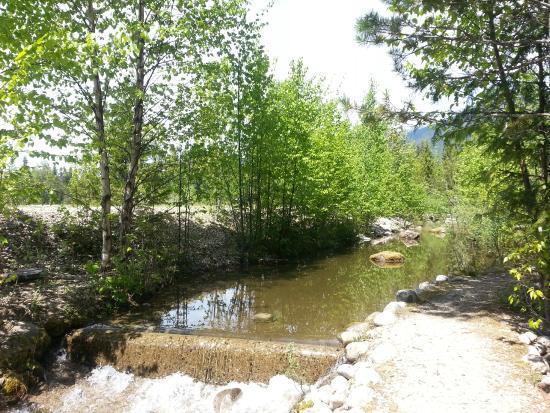 Murphy S Landing Cabin Amp Rv Resort Campground Reviews