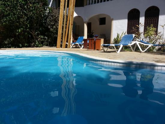 Casa Blanca Hotel & Surf Camp: Poolside