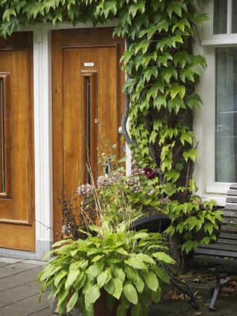 Fleur d'Amsterdam: welcome at our front door