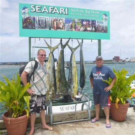 Seafari Fishing Charters : Days Catch